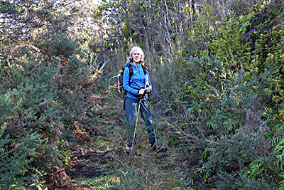 Clare on the track to Stony Creek surrounded by gorse bushes.